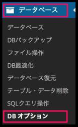 DB オプション